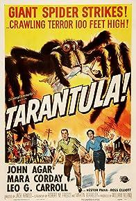 Primary photo for Tarantula