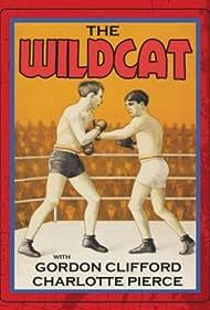 The Wildcat (1925)