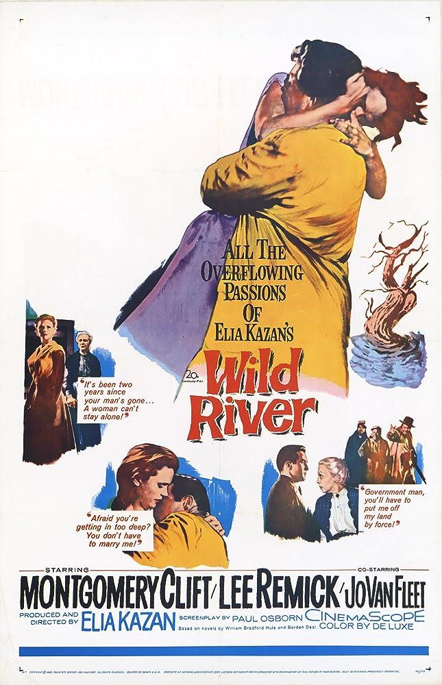 Wild River (1960)