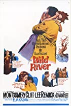 Wild River (1960) Poster