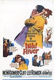 Wild River(1960) Poster - Movie Forum, Cast, Reviews