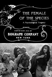 The Female of the Species(1912) Poster - Movie Forum, Cast, Reviews