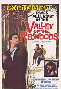 Primary photo for Valley of the Redwoods