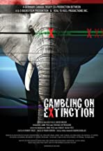 Gambling on Extinction