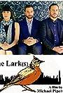 The Lark(s)