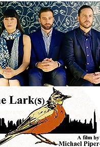 Primary photo for The Lark(s)