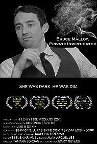 Sean O'Neill in Bruce Malloy, Private Investigator (2012)