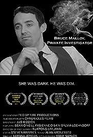 Bruce Malloy, Private Investigator Poster