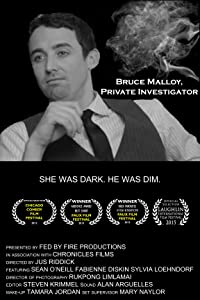 Downloading ipod movie video Bruce Malloy, Private Investigator [2048x2048]