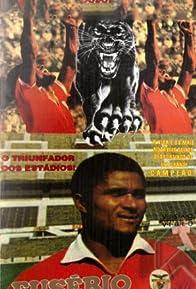 Primary photo for Eusébio, la Pantera Negra
