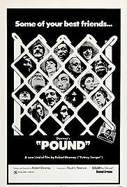 Pound Poster