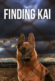 Finding Kai Poster