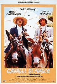 Cavalli si nasce Poster
