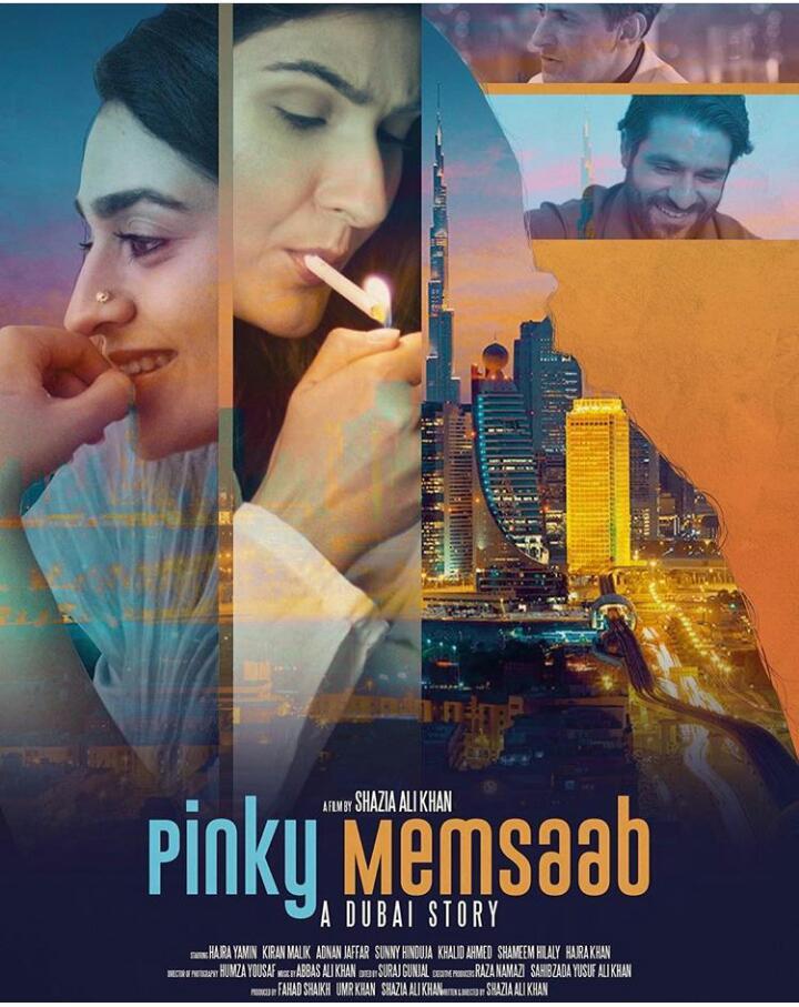 Pinky Memsaab (2018) 480p HDRip x264 ESubs 400MB