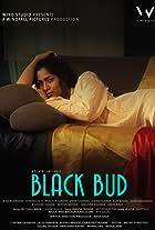 Black Bud