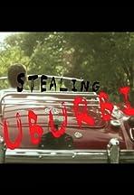 Stealing Suburbia