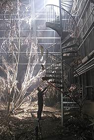 Herbarium (2013)