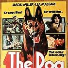 El perro (1977)