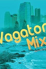 Vagator Mixer Poster