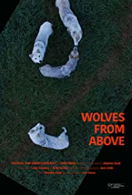 Wolves from Above (2018)