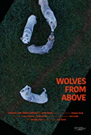 Wolves from Above Poster