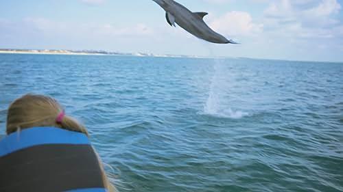 Dolphin Kick Official Trailer