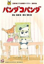 The Adventure of Panda and Friends: Panda Family!