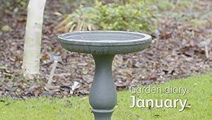 Homebase Garden Diaries