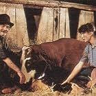 Annick Brard and Serge Reggiani in L'écho (1988)