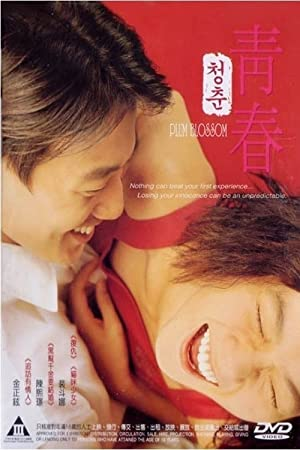 Plum Blossom 2000 with English Subtitles 12