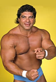 Primary photo for Don Muraco