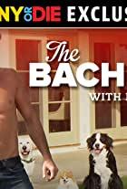 The Bachelor with Dogs and Scott Eastwood