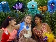 Sesame Street: 25th Birthday - A Musical Celebration