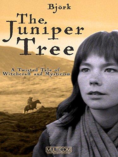 Image result for juniper tree 1990