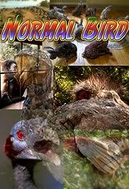 Normal Bird Poster