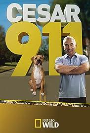Cesar 911 Poster