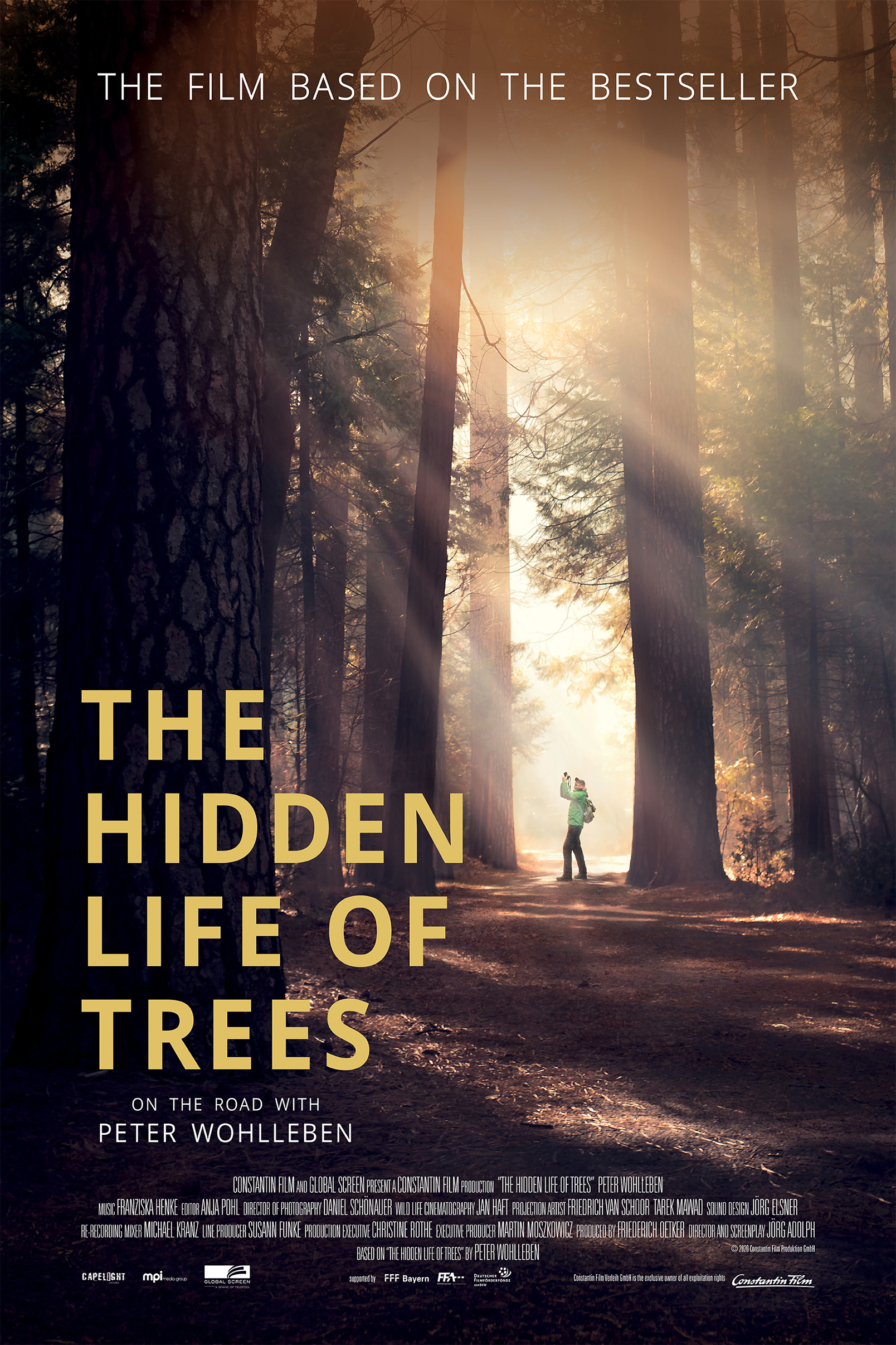 The Hidden Life of Trees 20   IMDb