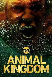 Image of: Scott Speedman Animal Kingdom Poster Imdb Animal Kingdom tv Series 2016 Imdb