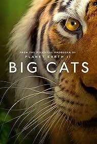 Big Cats (2018)