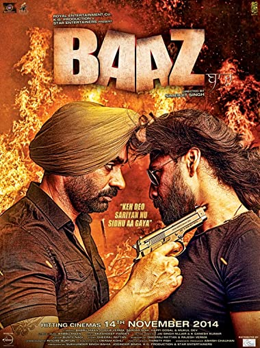 Baaz 2014 Full Hindi Movie Download 300MB 480p HDRip