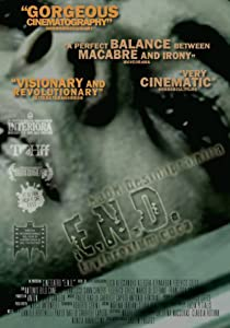 Watch that movie E.N.D. Italy [DVDRip]