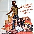 The Zebra Killer (1974)