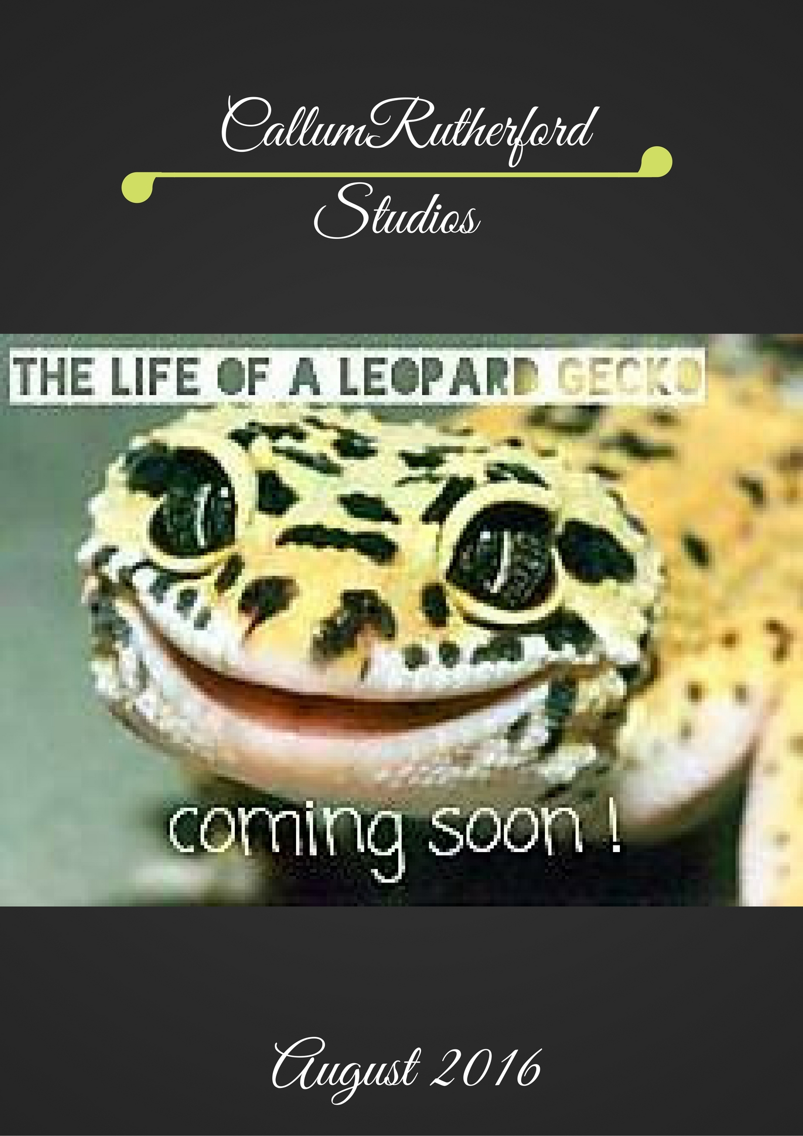 The Life Of A Leopard Gecko 2016