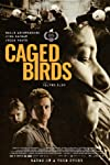 Caged Birds (2020)