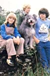 The Bagthorpe Saga (1981)