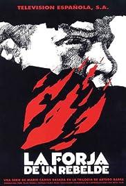La forja de un rebelde Poster
