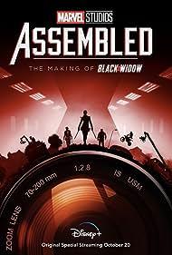 Marvel Studios: Assembled (2021)