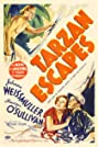 Tarzan Escapes (1936) Poster