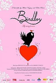 Primary photo for Birdboy