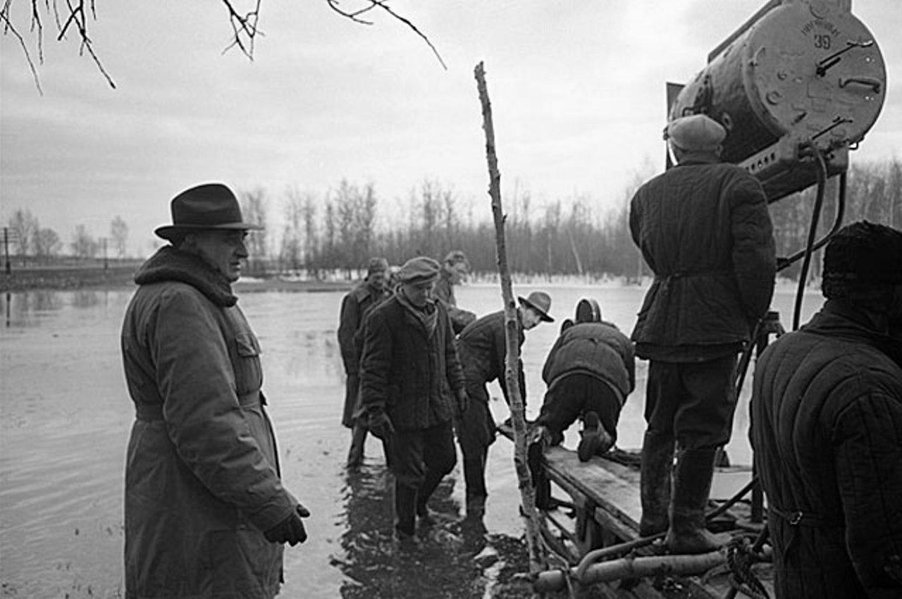 Aleksey Batalov, Mikhail Kalatozov, Evgeniy Svidetelev, and Sergey Urusevskiy in Letyat zhuravli (1957)